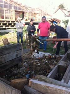 Travaux pratiques de compostage